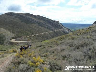 Senda Genaro - GR300 - Embalse de El Atazar - Patones de Abajo _ El Atazar; sierra espuña senderism